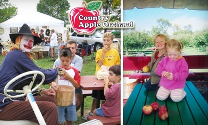 Country Apple Orchard - Springdale: $5 for 10 Pounds of Handpicked Apples at Country Apple Orchard ($10 Value)