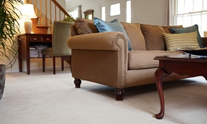 True Eco Dry: Upholstery or Carpet Cleaning from True Eco Dry (Up to 64% Off). Three Options Available.