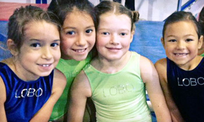 Lobo Gymnastics - Clear Lake: One or Two Months of Gymnastics or Dance Classes or a Private Party for Up to 15 at Lobo Gymnastics (Up to 71% Off)
