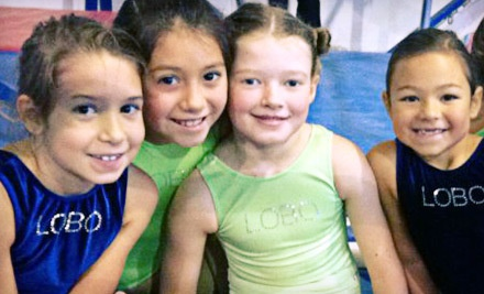 1 Month of Gymnastics or Classes for a Child Aged 3-14 - Lobo Gymnastics in Houston
