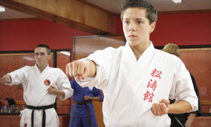 Tiger's Den Martial Arts & Fitness - Seabrook: Tiger's Den Martial Arts & Fitness