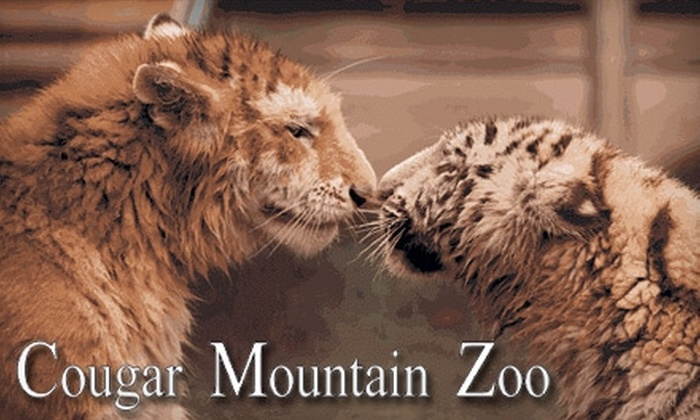 Cougar Mountain Zoo - Montreux: $5 Ticket for One-Day Admission ($10.50 Value) to Cougar Mountain Zoo in Issaquah