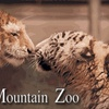 $5 for Ticket to Cougar Mountain Zoo in Issaquah