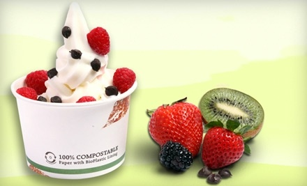 $10 Groupon to Frogberry - Frogberry in Fort Worth
