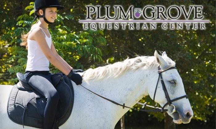 Plum Grove Equestrian Center - Groveland: $25 for a Regular Horse-Riding Lesson at Plum Grove Equestrian Center in Groveland ($50 Value)