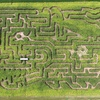 46% Off Corn Maze Visit at Schwallier's Country Basket