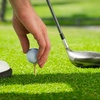 Up to 60% Off Golf in Three Rivers