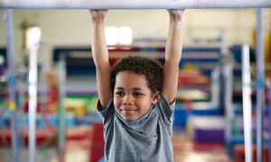 Michigan Academy Of Gymnastics: Four-Week Kinder 1 or Parent & Tot Gymnastics Class at Michigan Academy Of Gymnastics (50% Off)