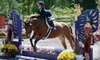 Heavens Gate Farm - Plumstead: $20 for a Horse-Riding Lesson ($35 Value) or $150 for a Five-Day Camp (Up to $295 Value) at Heaven's Gate Farm in Pipersville