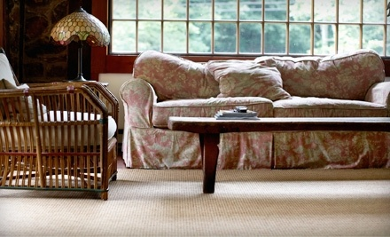 $100 Groupon to Healthy Carpets - Healthy Carpets in