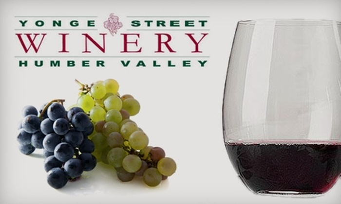 Yonge Street Winery - Multiple Locations: $15 for a Pair of Riedel Stemless O Glasses from Yonge Street Winery ($30 Value)