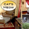57% Off at The Cat's Meow Bed & Breakfast
