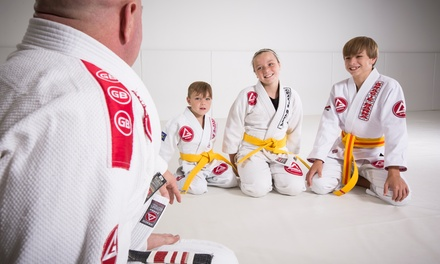 $40 for $120 Worth of Martial-Arts Lessons — Gracie Barra Knoxville