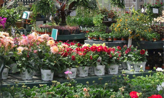 Winterberry Garden Center and Showroom - Deerfield and Sunset: $15 for $30 Worth of Plants, Flowers, and Gardening Supplies at Winterberry Garden Center and Showroom