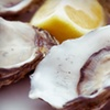 Half Off at Prime Catch Seafood Bar & Lounge in Rockville Centre
