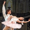 """Sleeping Beauty"" – Up to 40% Off Ballet"