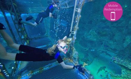Sydney Sealife Aquarium In Darling Harbour Nsw Groupon