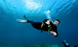 Central Valley Scuba Center: One-Hour Try Scuba Class for One or Two at Central Valley Scuba Center (70% Off)