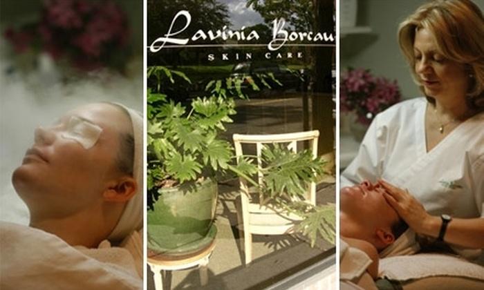 Lavinia Borcau Skin Care Salon - Brookline Village: $45 for a $95 Spa-Service Package at Lavinia Borcau Skin Care