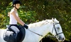 Luton Performance Horses - Grosse Ile: $39 for Two Private Horseback-Riding Lessons at Luton Riding Academy in Grosse Ile ($80 Value)