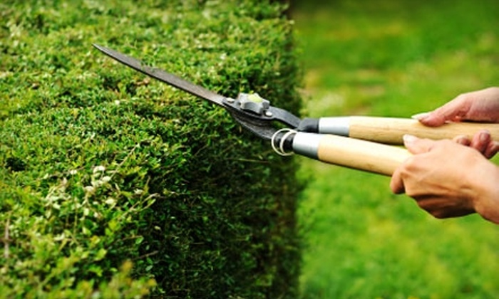 Yard Smart - Savannah / Hilton Head: $60 for Lawn Mowing, Edging, Trimming, and More from Yard Smart ($120 Value)