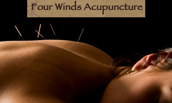 Four Winds Acupuncture - Downtown: $40 for a 90-Minute Acupuncture Session and Consultation at Four Winds Acupuncture ($105 Value)