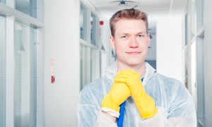 5 Star Cato Cleaning: Four Hours of Cleaning Services from 5 Star Cato Cleaning (45% Off)