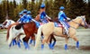 Rockin' B Riding Club - Rockin' B Horse: Tickets for Two or Four to Equi-mazing Horse Show and Fair from Rockin' B Riding Club (Up to 53% Off)