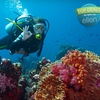 Up to 72% Off Scuba Certification in Holland