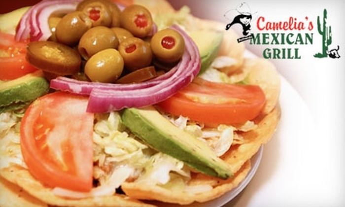 Camelia's Mexican Grill - Multiple Locations: $15 for $30 Worth of Mexican Fare and Drinks at Camelia's Mexican Grill in Farmington Hills