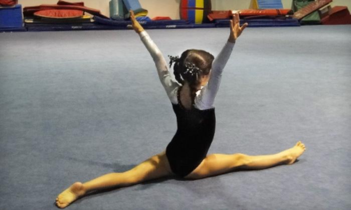 ENA Gymnastics - Multiple Locations: Gymnastics Classes or Birthday Party at ENA Gymnastics. Four Options Available.