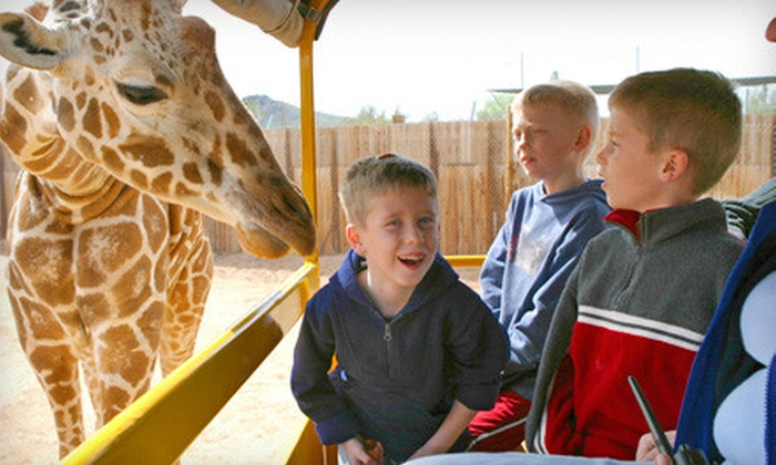 Out of Africa Wildlife Park - Camp Verde: Out of Africa Wildlife Park Outing for Two or Four in Camp Verde (Up to 53% Off)