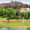 59% Off Golf Lessons