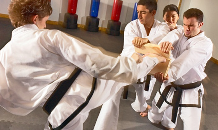 All-Pro Tae Kwon Do - Los Gatos: $20 for a Tae Kwon Do or Cardio Thai Boxing Package at All-Pro Tae Kwon Do ($570 Value)