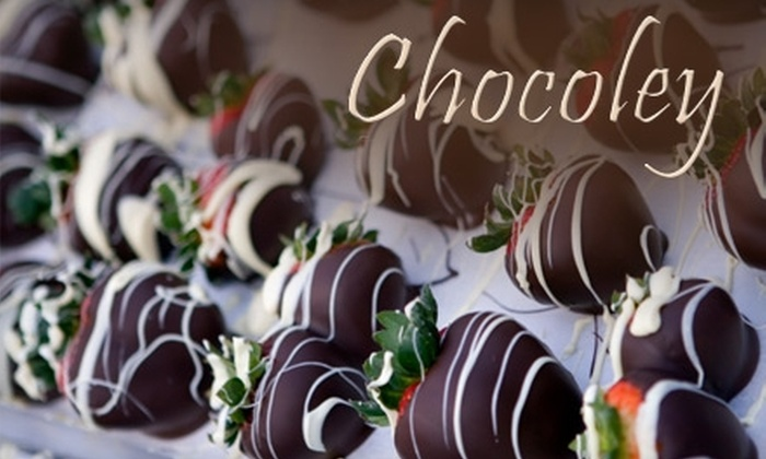 Chocoley Chocolate - Big Creek: $15 for $30 Worth of Gourmet Belgian-Style Chocolate and Candy-Making Supplies from Chocoley Chocolate in Alpharetta