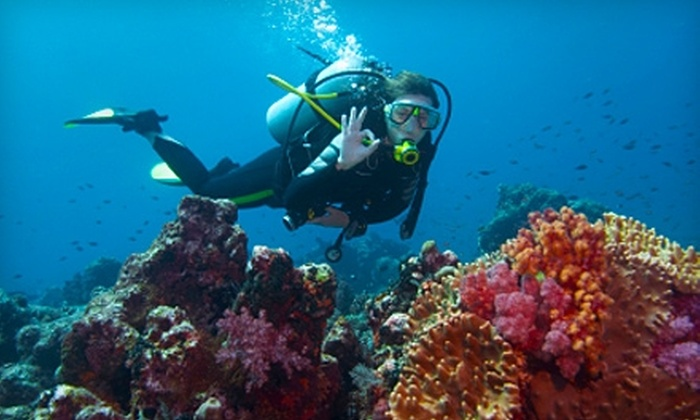 Ocean Sands Scuba - Holland: $19 for Introductory Scuba-Diving Class at Ocean Sands Scuba in Holland