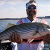 56% Off Fishing Trip for Up to Four on Lake Lanier