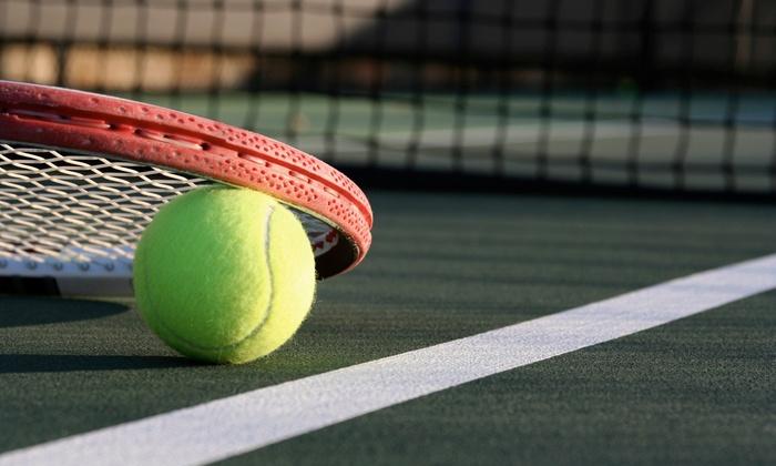 MI Tennis Lessons - Tennis Court Location: 5 or 10 Private Tennis Lessons at MI Tennis Lessons (Up to 50% Off)