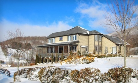 2-Night Stay for Two in a Blueberry, Bordeaux, or Pinot Grigio Suite, Valid NowJuly 31, 2012 - Banner Elk Winery & Villa in Banner Elk