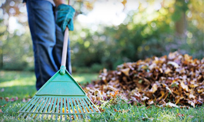 Handy-Matt LLC - Columbia, MO: Two Hours of Lawn Cleanup or 1,050 Square Feet of Pressure-Washing from Handy-Matt LLC (Up to 53% Off)
