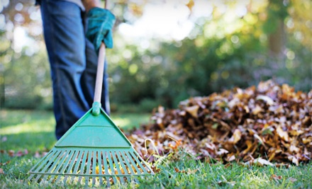 2 Hours Worth of Fall Cleanup (a $100 value) - Handy-Matt LLC in