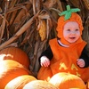 $10 for Corn-Maze & Hayride Outing in Springfield