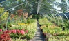 Oriental Garden Supply, LLC - Cobbs Hill: $15 for $30 Worth of Plants and Garden Supplies at Oriental Garden Supply in Pittsford