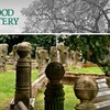Elmwood Cemetery - South Memphis Planning Dist: $8 for One Adult Admission to Costume Twilight Tour at Elmwood Cemetery ($15 Value)