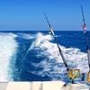 45% Off Fishing