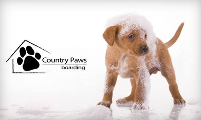 Country Paws Boarding - Breslau: $25 for $60 Worth of Canine-Care Services at Country Paws Boarding