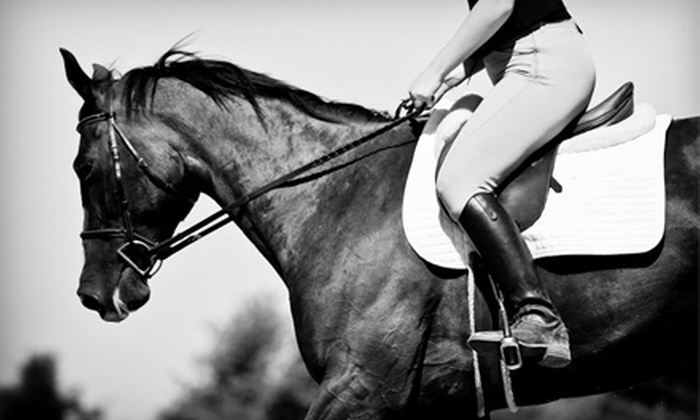 High Point Equestrian Enterprises - Ohio: $25 for Two Private Riding Lessons ($70 Value) or One Semiprivate Lesson for Two ($60 Value) at High Point Equestrian Enterprises in Truro
