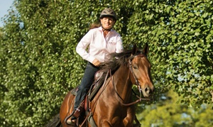 Julie Goodnight Horsemanship: $25 for $50 Worth of Services — Julie Goodnight Horsemanship