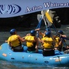 Action Whitewater Adventures - North El Dorado: $80 for One White-Water-Rafting Excursion and Complimentary Lunch at Action Whitewater Adventures
