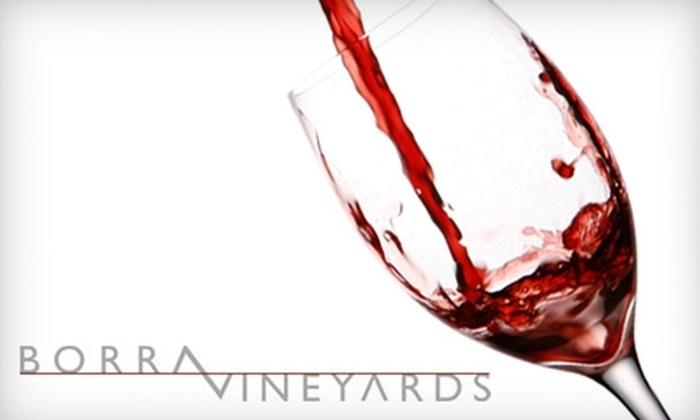 Borra Vineyards - Lodi: $20 for a Wine Tasting for Two and a Bottle of 47.5° Syrah 2007 Limited Release at Borra Vineyards ($45 Value)